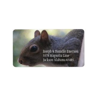 Squirrel Address Sticker
