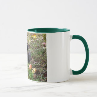 Squirrel And Steller Jay Animal Mug