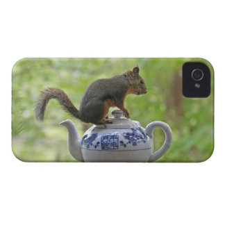 Squirrel and Teapot Blackberry Case