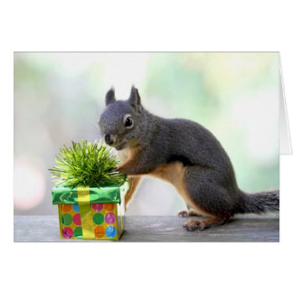 Squirrel and Wrapped Present Card