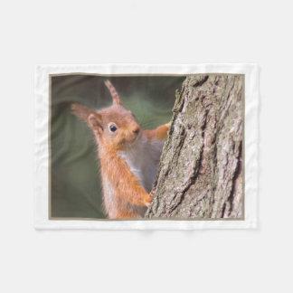 Squirrel blanket