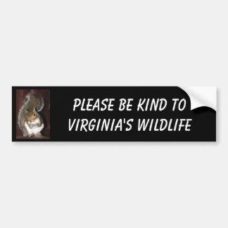 "Squirrel bumper sticker, featuring ""Summer"" Bumper Sticker"