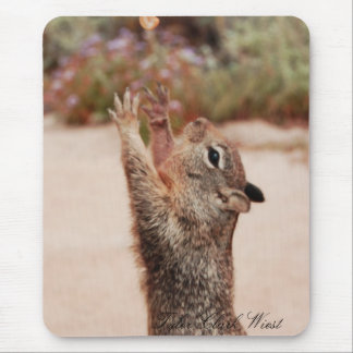 Squirrel catch 2 mouse pad