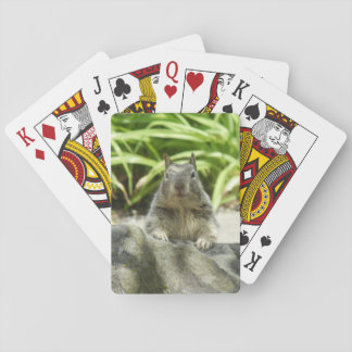 Squirrel Chilling in the Shade Playing Cards