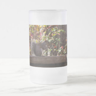 Squirrel Chow Time Frosted Glass Beer Mug