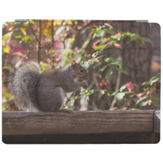 Squirrel Chow Time iPad Cover