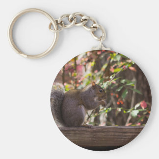 Squirrel Chow Time Key Ring