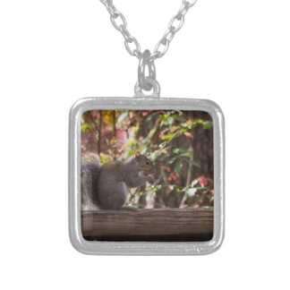 Squirrel Chow Time Silver Plated Necklace