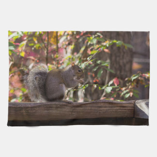 Squirrel Chow Time Tea Towel