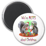 Squirrel Christmas Nuts Fridge Magnets