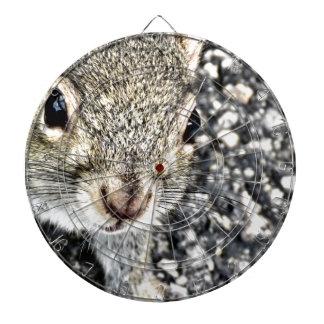 Squirrel Close Up! Dartboard
