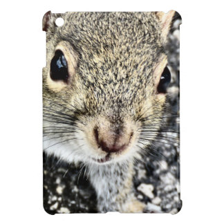 Squirrel Close Up! iPad Mini Cases