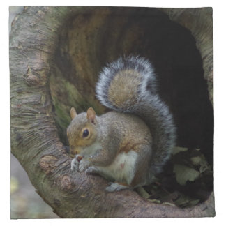 Squirrel Cloth Napkins