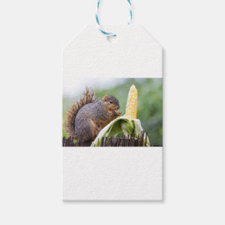 Squirrel Corn Gift Tags