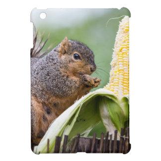 Squirrel Corn iPad Mini Covers