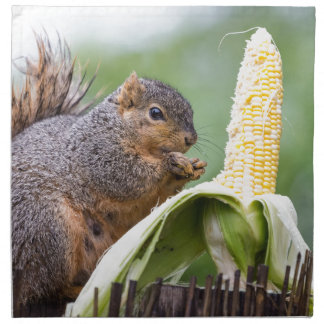 Squirrel Corn Napkin
