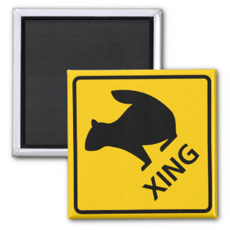 Squirrel Crossing Highway Sign Magnet