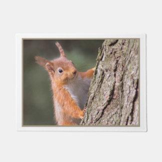 squirrel door mat