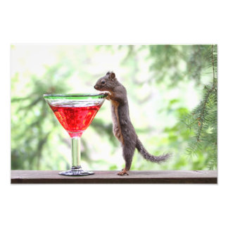 Squirrel Drinking a Cocktail Art Photo