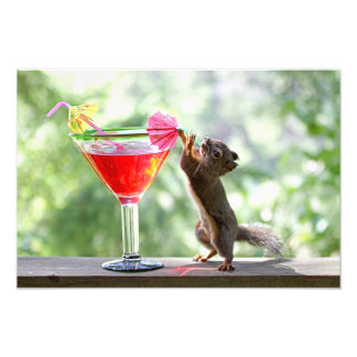 Squirrel Drinking Cocktail Art Photo