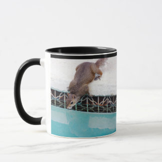Squirrel Drinking Out Of The Pool... Mug