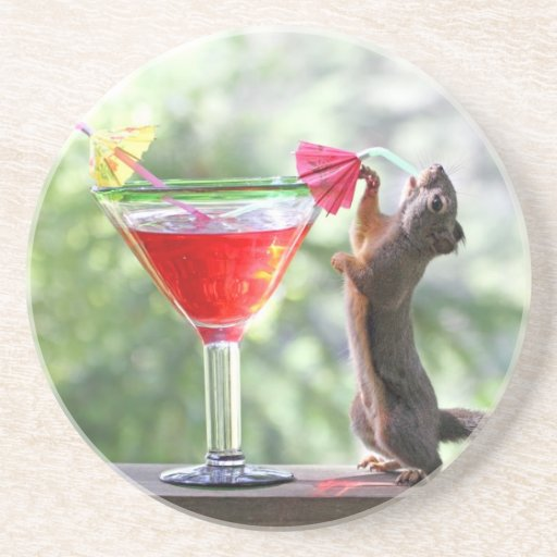 Squirrel Drinking Tropical Drink Beverage Coaster