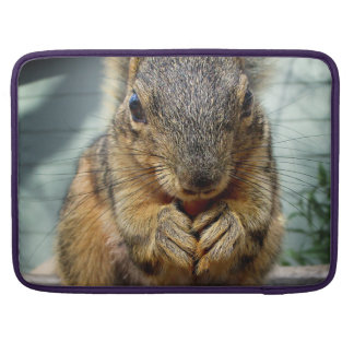 Squirrel Eating 1 Sleeve For MacBook Pro