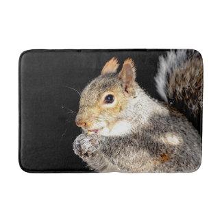 Squirrel eating a nut bath mat