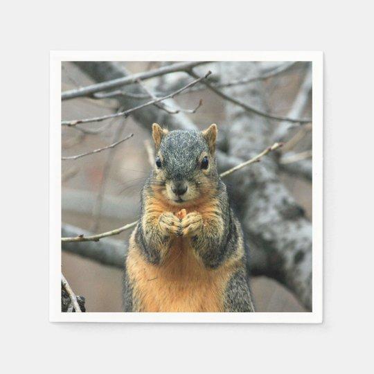 Squirrel Eating a Nut Disposable Serviette