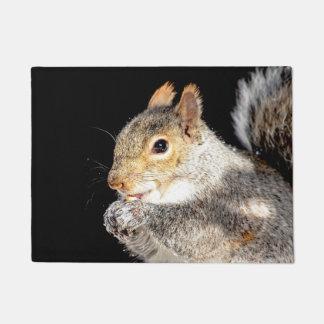 Squirrel eating a nut doormat