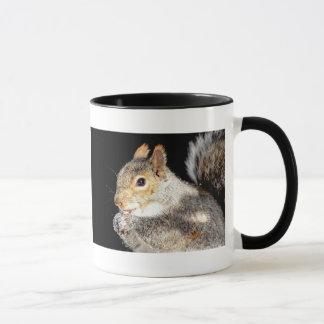 Squirrel eating a nut mug