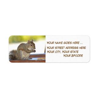 Squirrel eating peanuts Return Address Labels