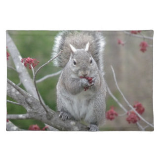 Squirrel eating place mat