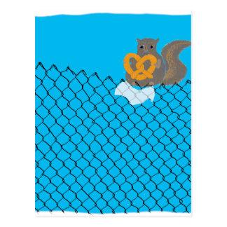 Squirrel eating pretzel postcard