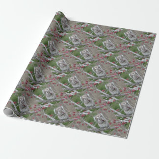 Squirrel eating wrapping paper