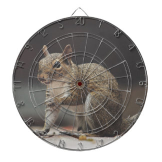 Squirrel Fluffy Dartboard