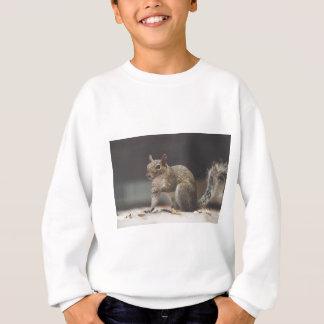 Squirrel Fluffy Sweatshirt