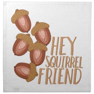Squirrel Friend Printed Napkin