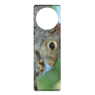 Squirrel Hanging in A Tree Door Knob Hanger