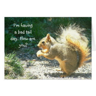SQUIRREL /HAVING BAD TAIL DAY /HOW ARE  YOU? NOTE CARD