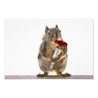 Squirrel Holding Red Rose Bouquet Art Photo