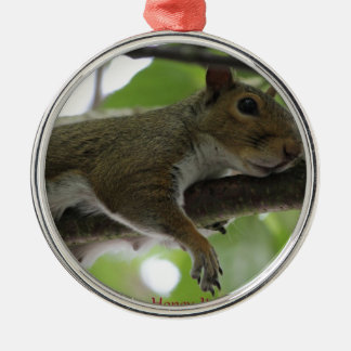 """Squirrel - """"Honey, It Ain't Easy Being a Women"""" Silver-Colored Round Decoration"""