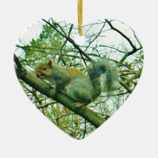 Squirrel in a Light Blue Mist Ornaments