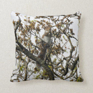 Squirrel in a Tree Throw Cushions