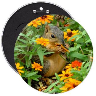 Squirrel In Marigolds 3774 Pinback Button