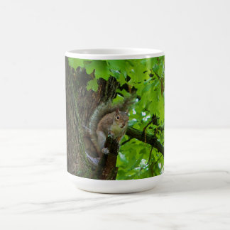 Squirrel in Oak Tree Nature Mug