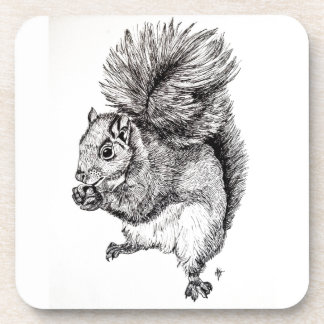 Squirrel Ink Illustration on Coasters