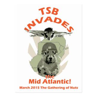 Squirrel Invades Mid Atlantic orange lettering Postcard