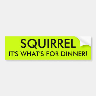 SQUIRREL IT'S WHAT'S FOR DINNER! BUMPER STICKER