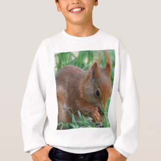Squirrel - Jean Louis Glineur Photography Sweatshirt